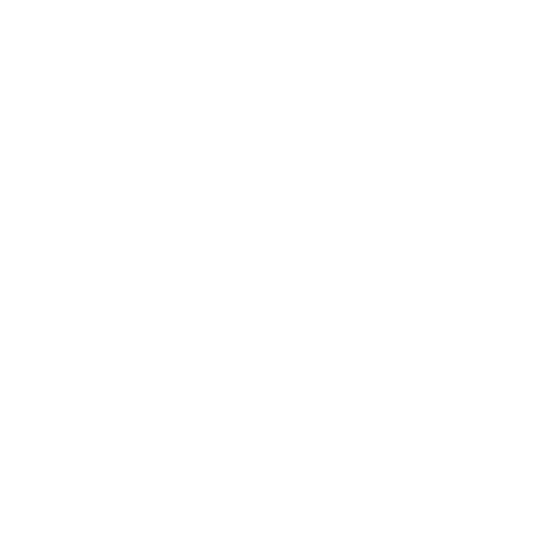 Kinesiologie Icon